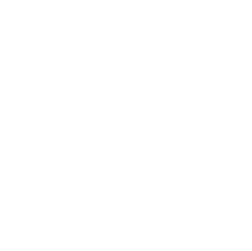 software-icon